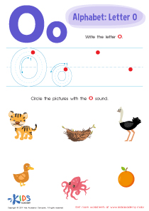 Letter O Tracing Worksheet Preview