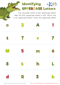 Identifying Uppercase Letters Worksheet Preview