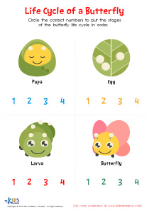 Butterfly Life Cycle Printable Worksheet