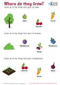 Where Do They Grow