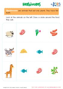 Herbivorous animals worksheet