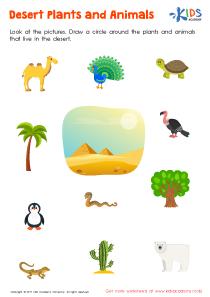 Desert plants and animals worksheet
