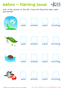 Plants and seeds worksheet