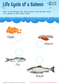 Life cycle of a salmon worksheet pdf