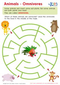 Omnivores animals worksheet pdf