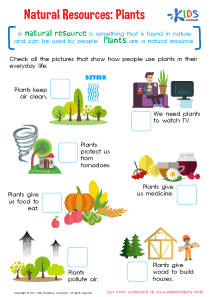 Natural resources plant worksheet