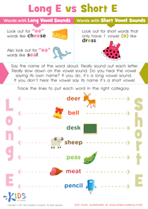 Long and Short Vowel E Worksheet