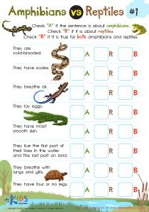 Amphibians vs Reptiles Worksheet PDF