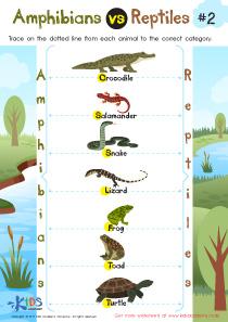 Amphibians vs Reptiles Worksheet for 3rd Grade