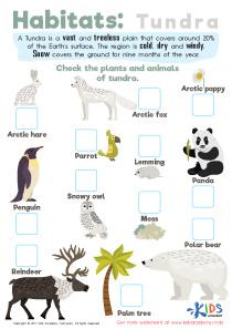Tundra habitats worksheet for 3rd grade