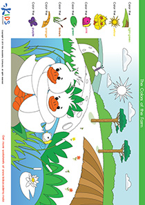 Coloring Pages: Color the Ducklings near the Pond