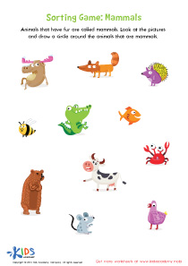 Sorting worksheet - mammals